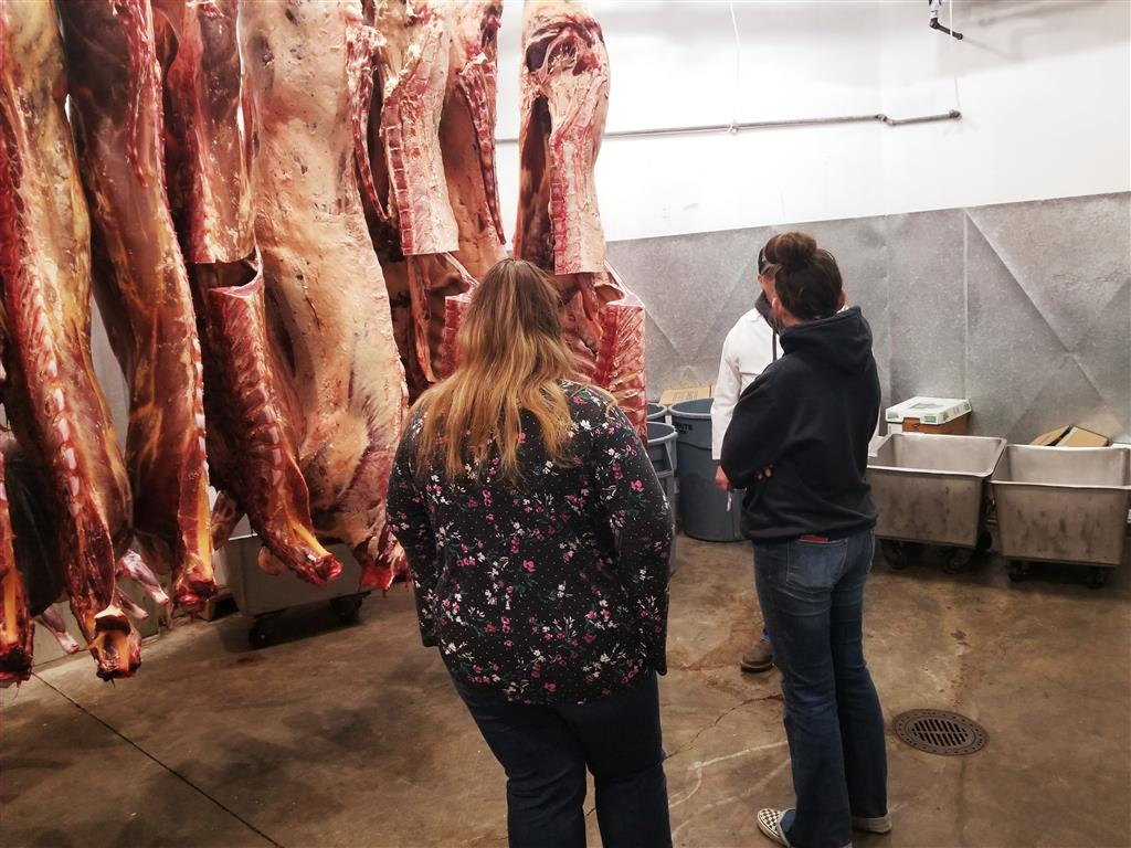 Meat Evaluation at Oregon Beef with Tom Jones.