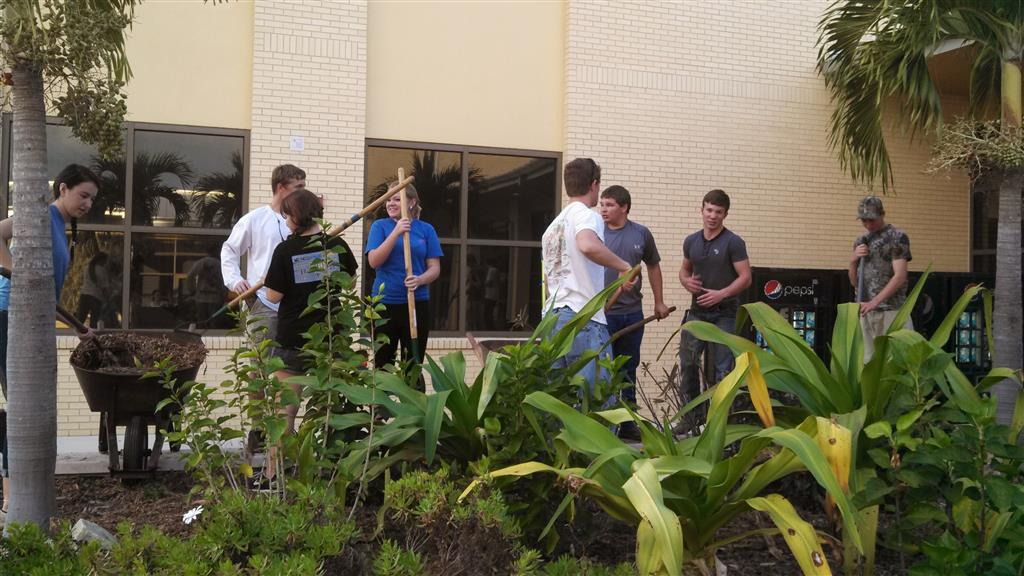 FFA members met four times to create this native Florida butterfly garden in the courtyard of the school.  They take pride in the area, and often will pull weeds or take note of any struggling plants during their passing periods.  The garden is the most noticeable in the courtyard, and administrators and teachers often comments on the appeal and butterfly