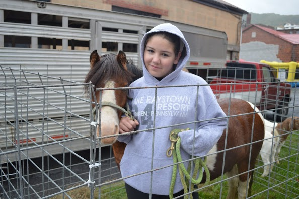 Agricultural Education students helped unload a pony, two boar goats, a jersey calf, and sheep for the Farm City Day - Tyrone on the first Saturday in October 2014.  Baylee DelBaggio, pictured, spent most of the day talking with the public about the difference between a horse and a pony.  She is involved in the equine industry through her SAE project.  Sharing their knowledge and teaching the public about the importance of agriculture in our community and lives is very important to our chapter.