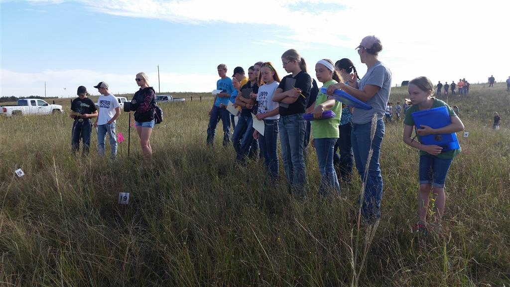 Waiting for the horn so we can identify range plants. Members of  Arthur, Hyannis, Mullen, and McPherson County FFA Chapters participated in this event