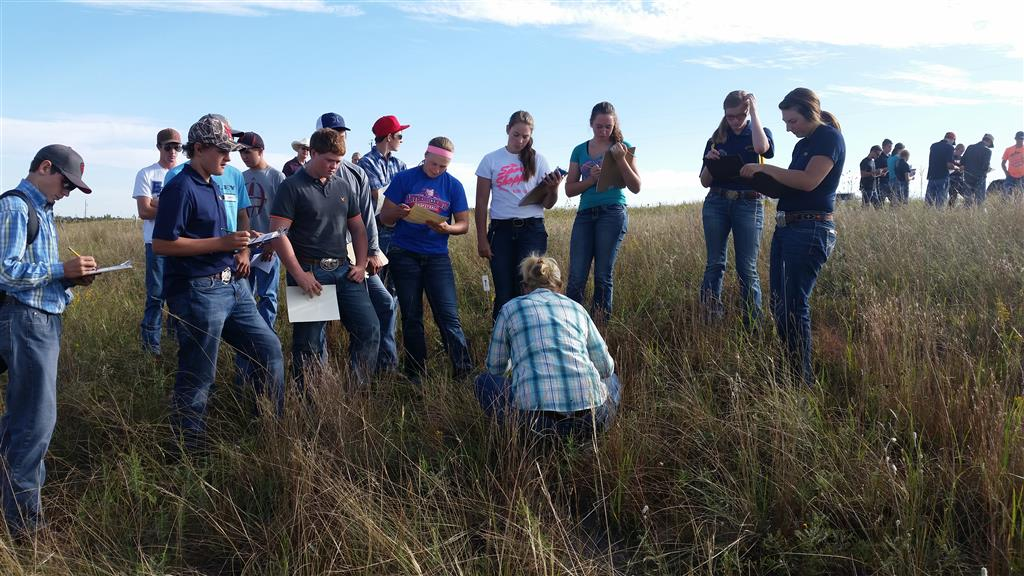 Jess Milby from UNL West Central Research Station explains how to identify range plants.