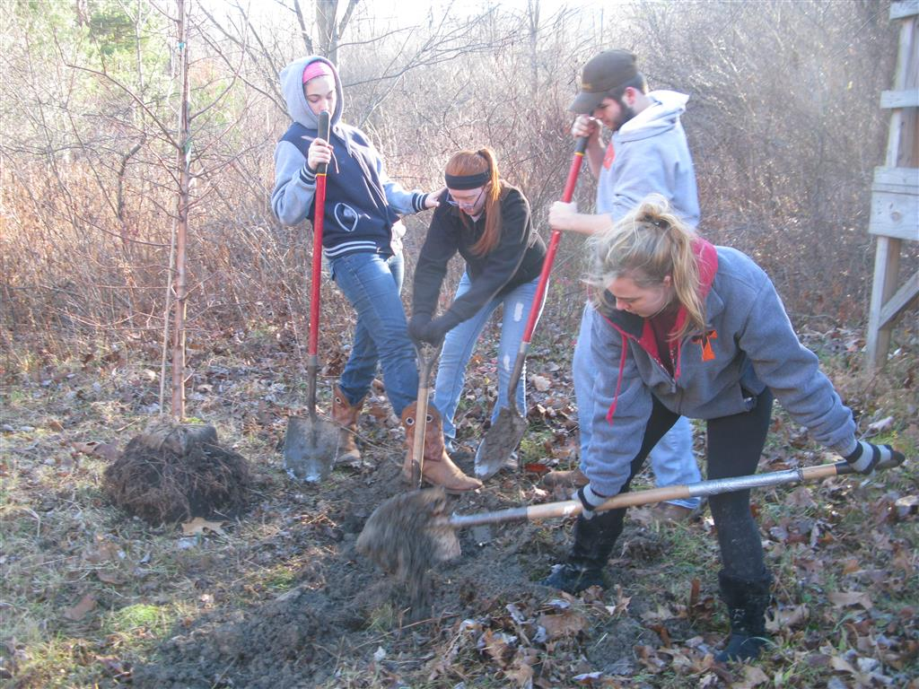 Tyrone Area FFA members worked along side of C&L Lawncare employees at the Albemarle Trail on Back Vail Road to plant trees.  The members learned how to properly plant the trees and then mulched them to help them survive the winter. Learning to Serve is part of the FFA motto and our chapter encourages all members to go and serve their community.  We also help with fair cleanup, the backpack program for elementary students and landscape at the local community players theatre location.  Many organization contact our Ag teacher because of our reliability and work we have done through our service projects.