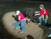 SRS Calf Scramble Event