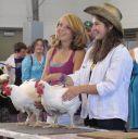 FDL County Fair