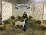 Fayette County Youth Livestock Sale
