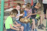 """Ag and Water Festival-""""A Countywide Affair!"""""""