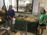 Animal Lab setup and cleanup
