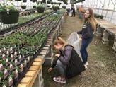 Reed's Greenhouse & Shelton Family Farm field trip