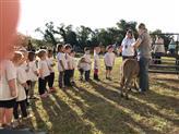 ECC Petting Zoo