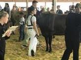 State Dairy Judging Contest