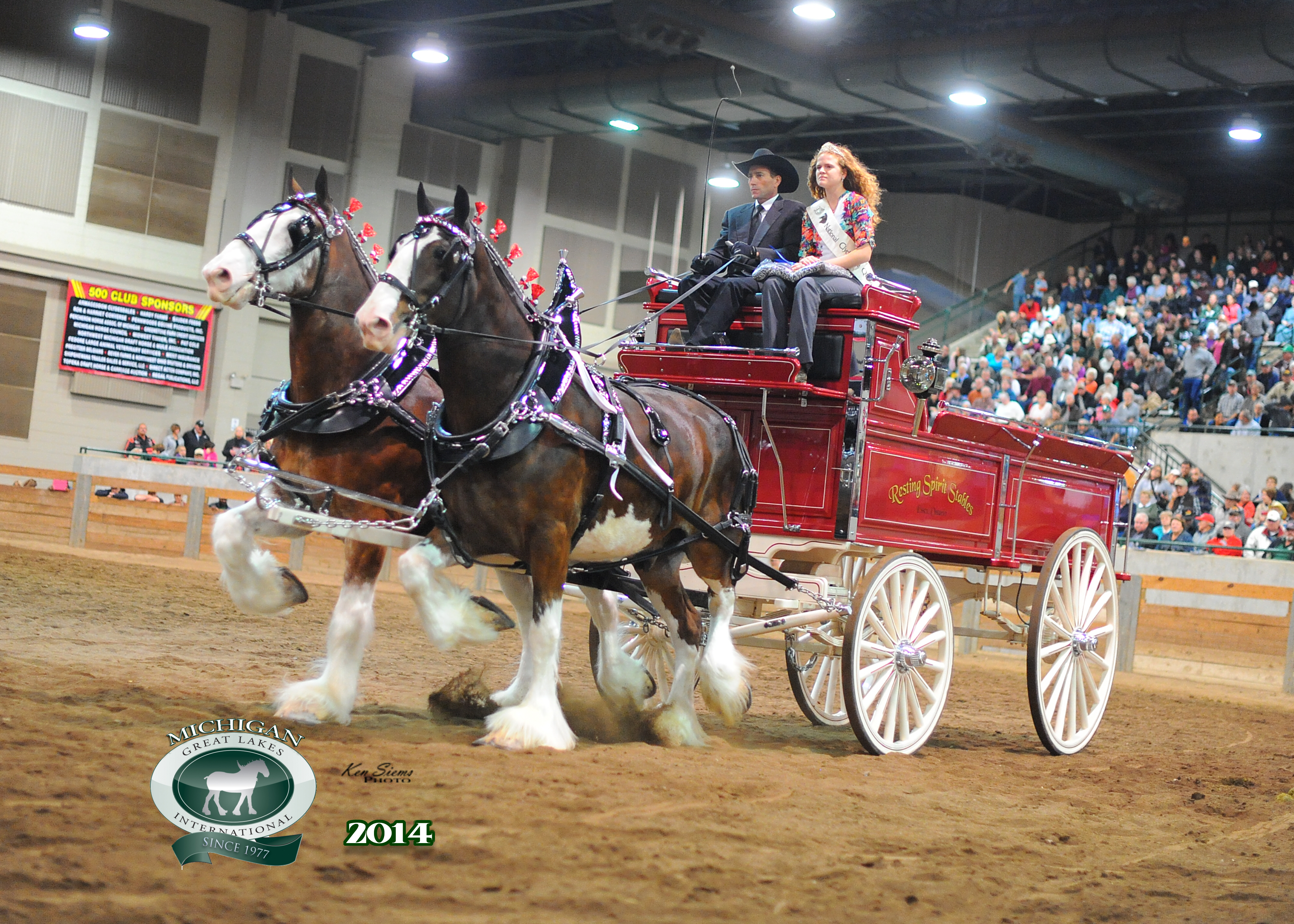 Clydesdale Equine SAE, North Montgomery FFA, Indiana