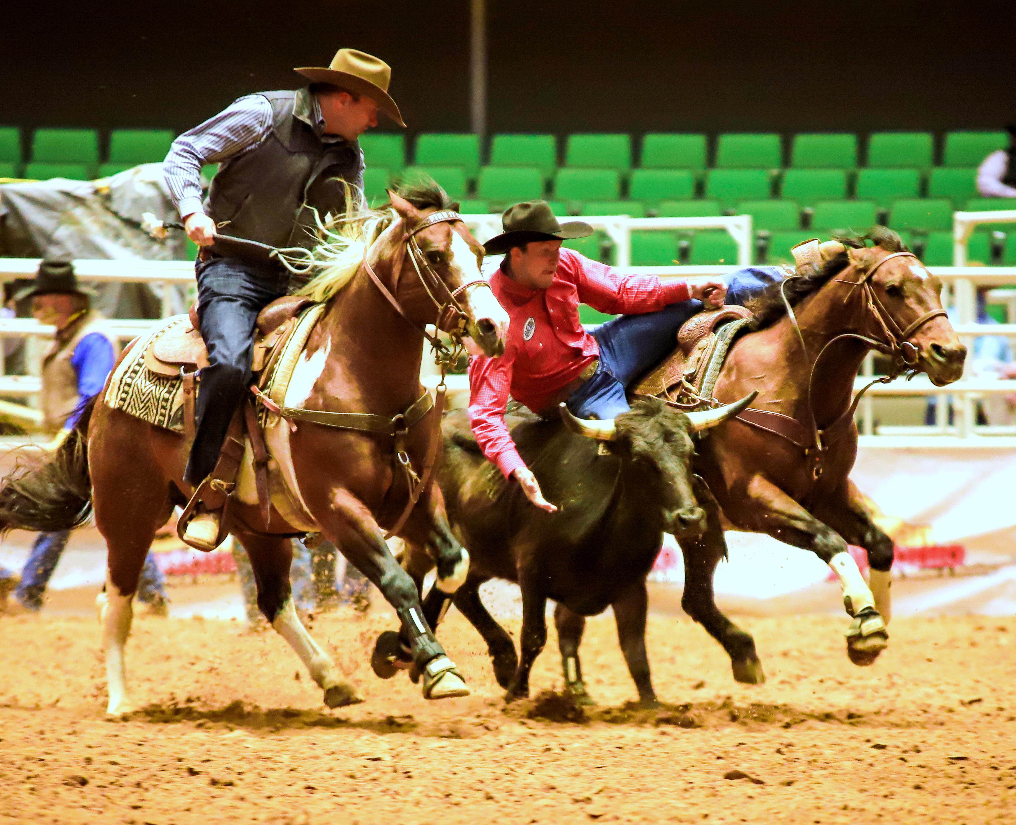 Boyd Hanagriff, Alpha Omega FFA  competing in San Antonio FFA Rodeo