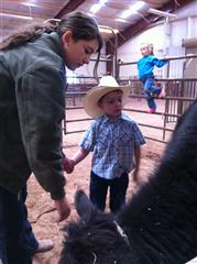 Community Service, Payson FFA, Arizona